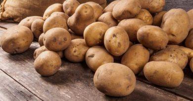 A101 patates fiyatı
