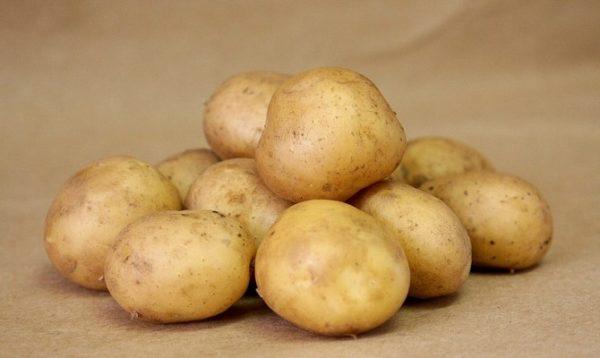 almanya patates fiyatları
